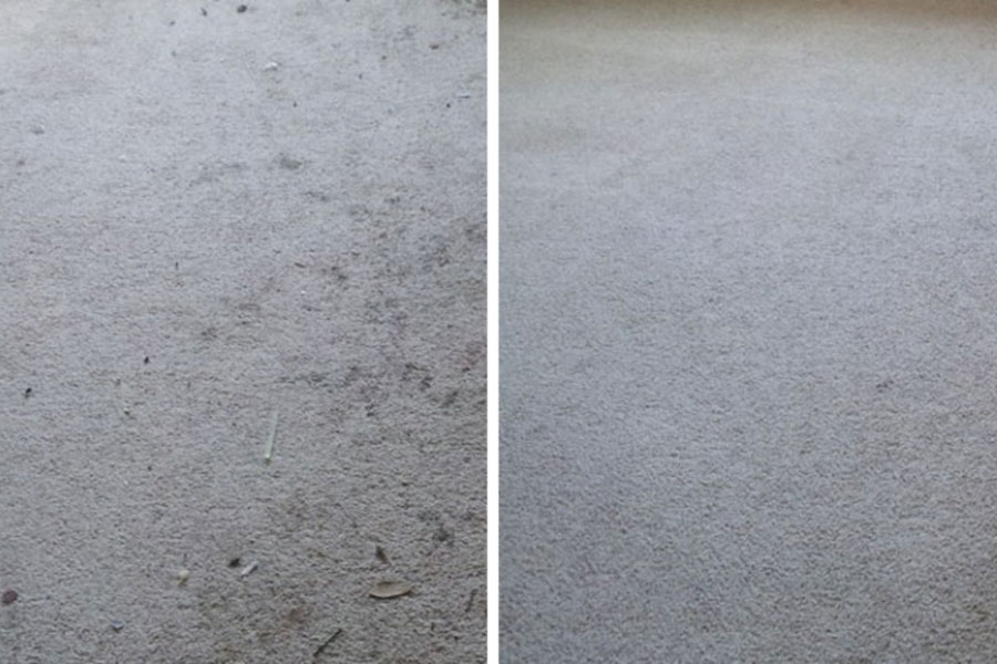 before and after carpet cleaning in san diego ca