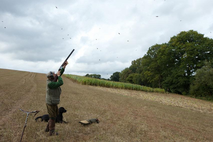 shooting season, uk at sodington hall