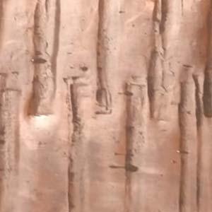 Modern Texture Copper