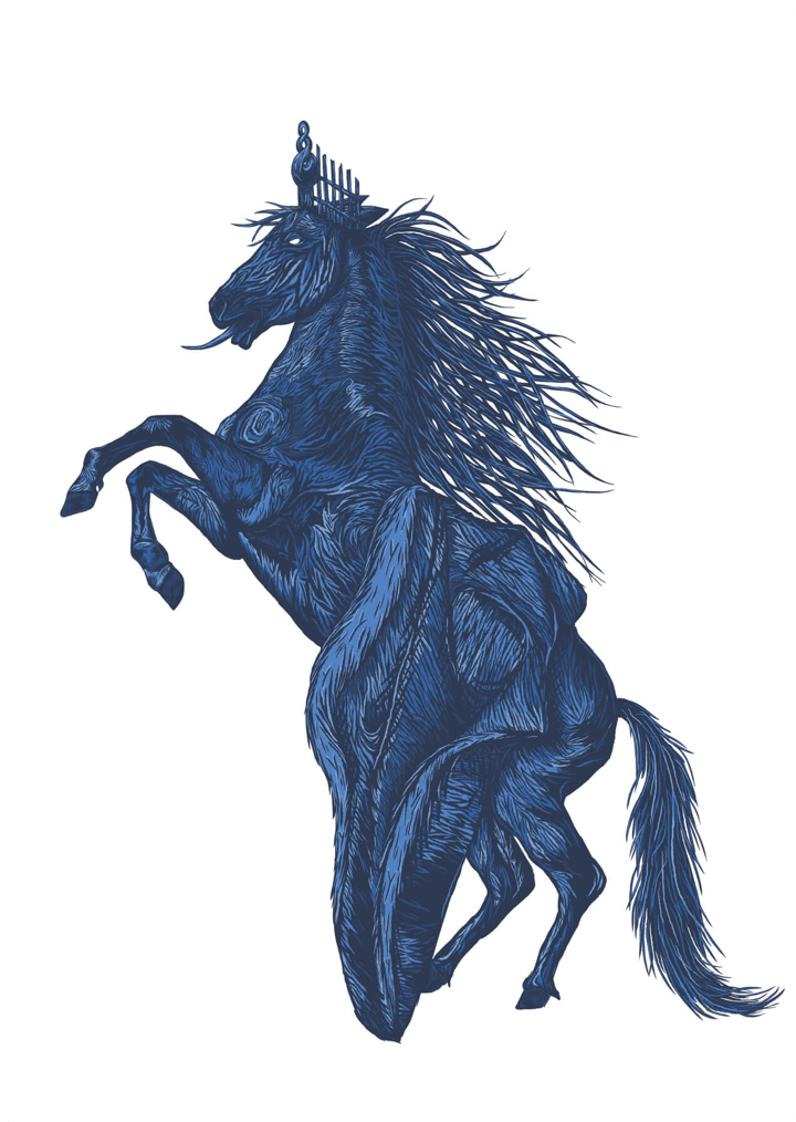 Waikato Stallion Digital Illustration