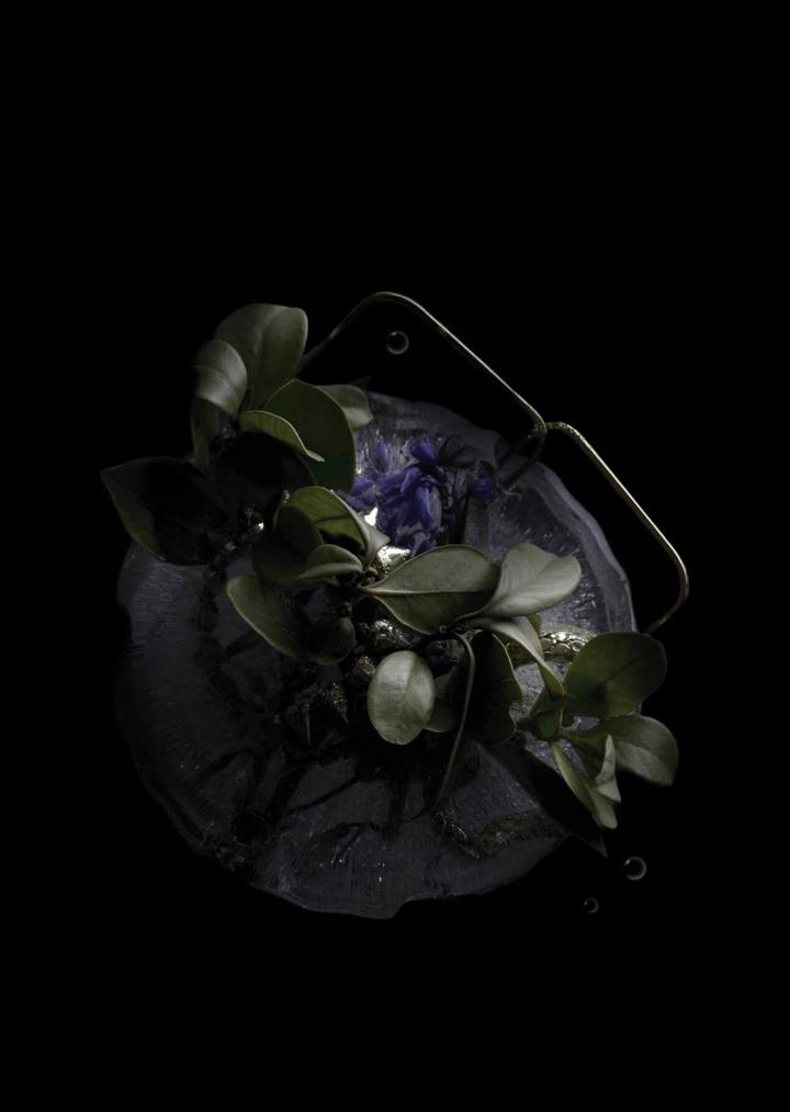 Ice Fashion Photography
