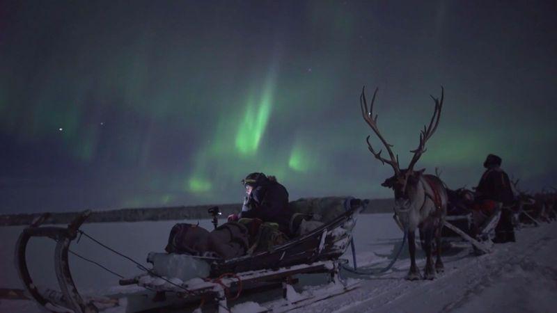 Aurora Hunting by Reindeer sleigh