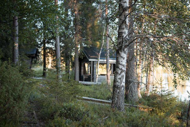 Full day in Lapland, Rovaniemi tour
