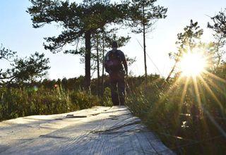 Hiking Rovaniemi