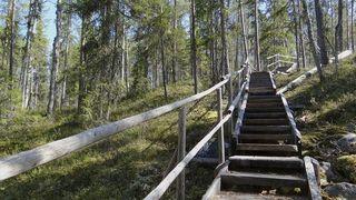 Auttiköngäs nature trail