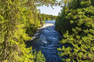 Auttiköngäs are gorgeous cascade waterfalls