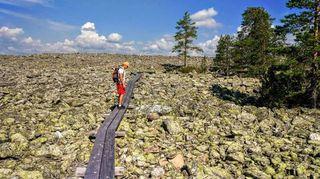 moderate Hiking trail 7km