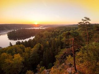Midnight sun Picnic from Rovaniemi