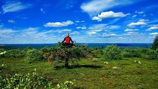 Lappish joga