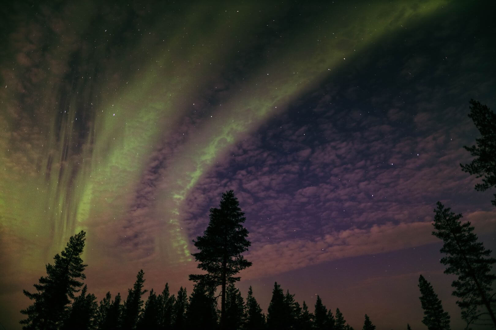 Northern lights in a starry night sky