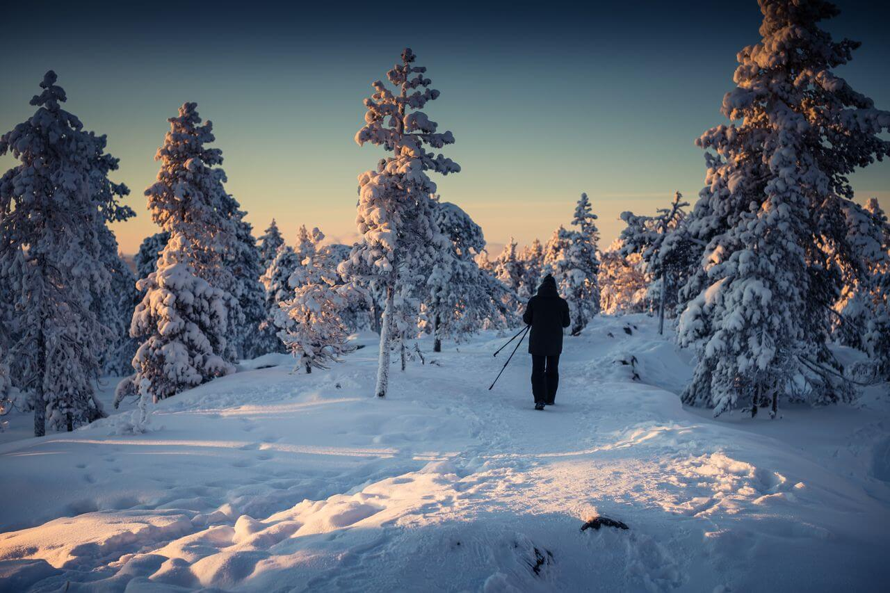 Nature in Lapland, Nature lovers approoved