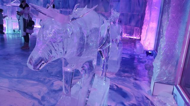 Ice gallery, Santa Park 🎅
