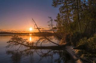 Midnight Sun Rovaniemi, July