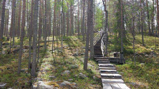 Hiking trail Korouoma national park
