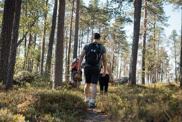 Hiking in Finnish forest