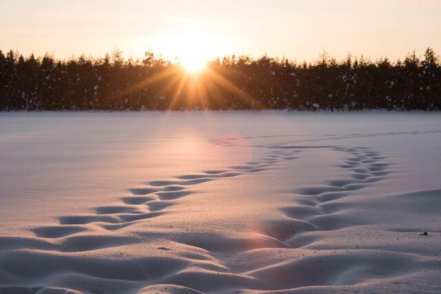 Frozen Langonlampi lake