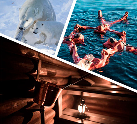 Get ready for a full day adventure tour which includes only the best Lappish experiences you can imagine! Visit Ranua Zoo, go to a traditional Lappish wood burning sauna, try floating in a private lake and see Northern lights or Midnight sun.