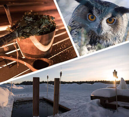 We won't overburden your schedule, we will just make sure that you see the best Rovaniemi has to offer. See the rare arctic animals in the wonderful Ranua Zoo, spend some time shopping, and finish the evening in a relaxing Finnish sauna followed by an open fire Dinner!