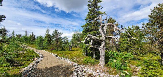 Amethyst mine adventure in Pyhä Luosto summer
