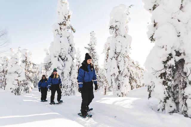 Snowshoeing Tour at the Arctic Circle