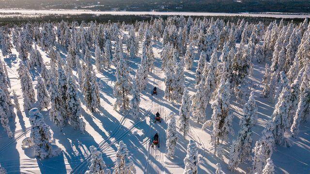 Snowy Lappish landscape is amazing in Winter