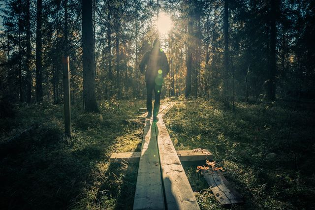 Hiking in September, Rovaniemi