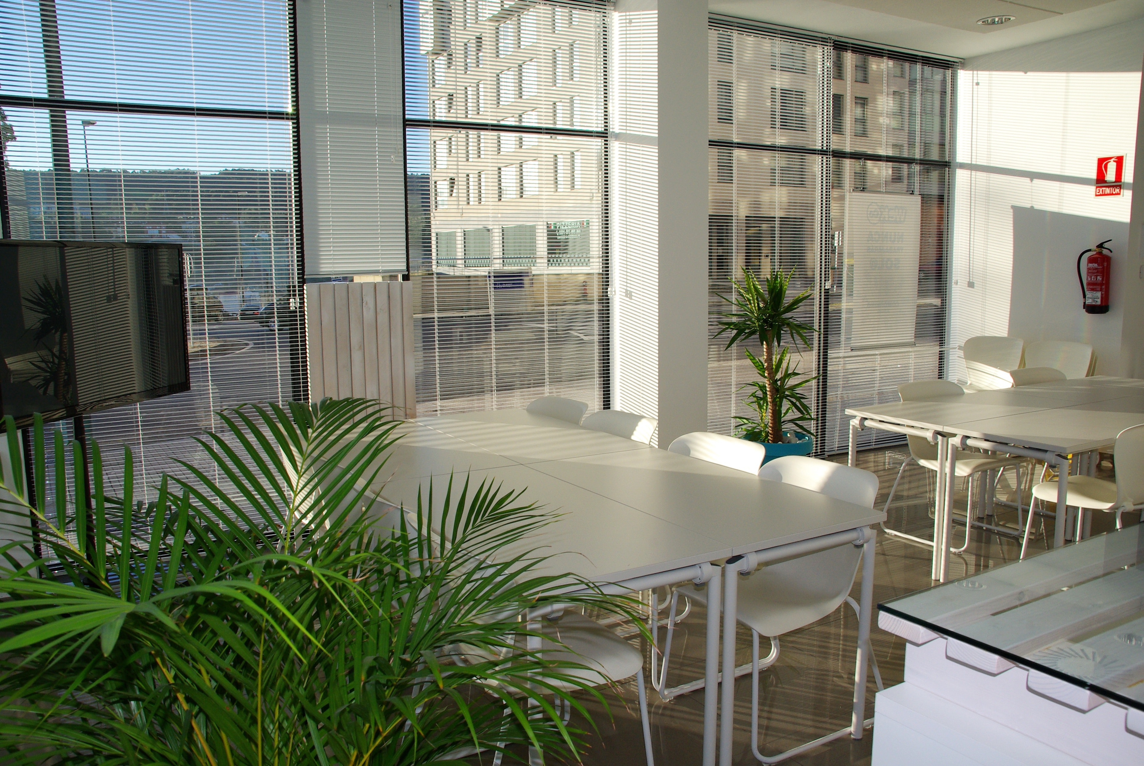 Meeting room with biophilic office design