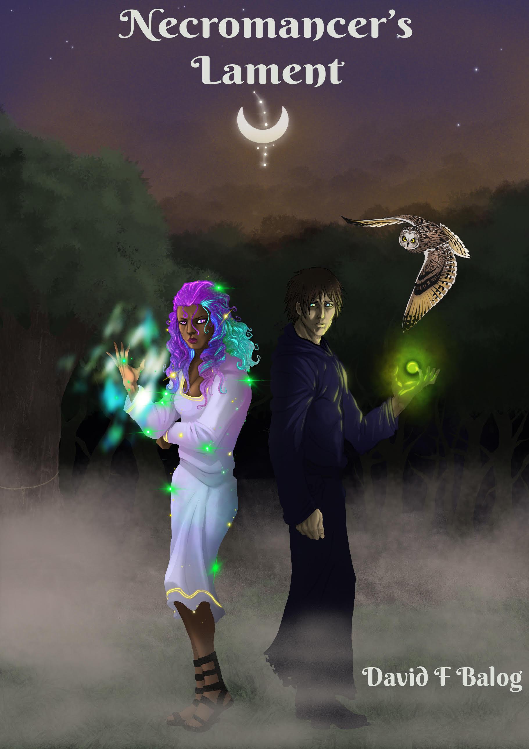 Cover of Necromancer's lament fantasy book by david balog