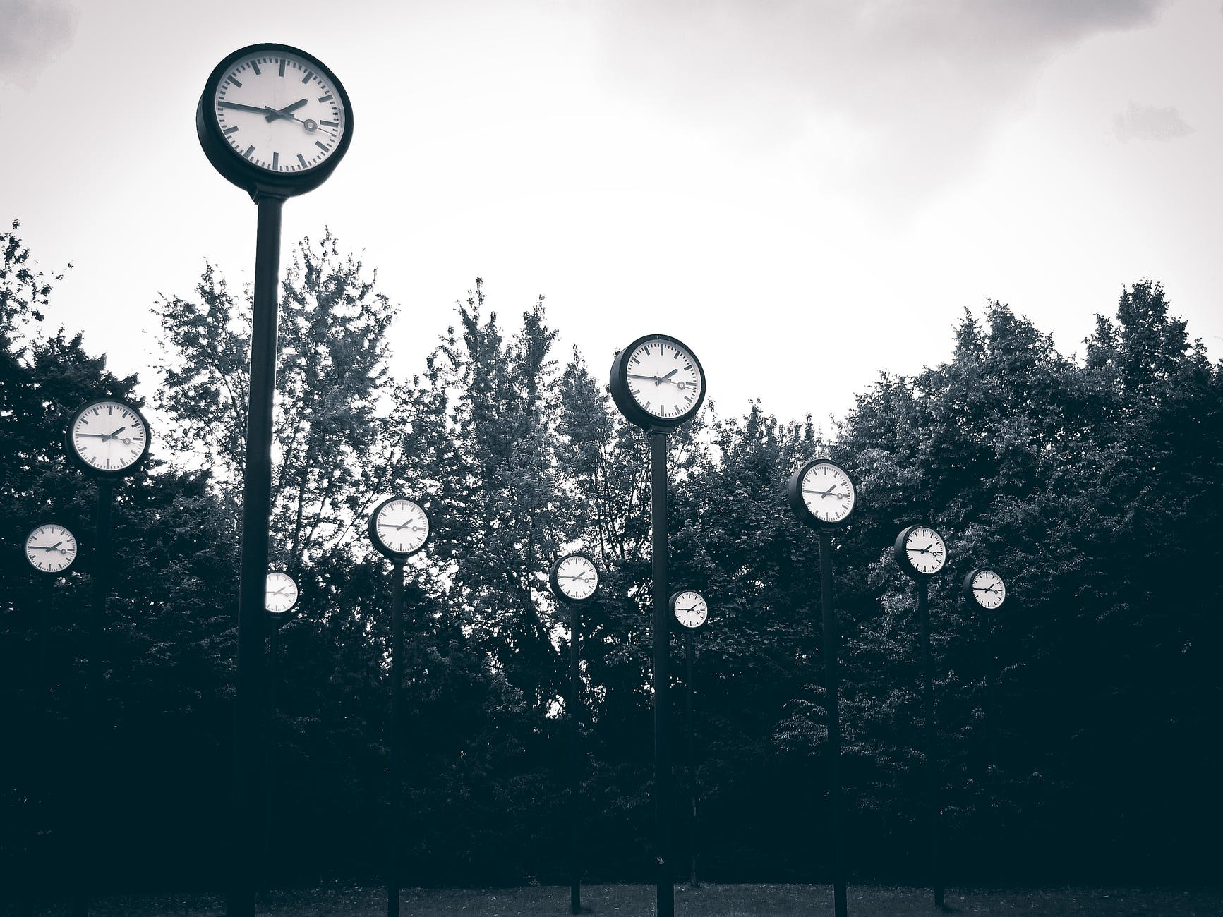 numerous clocks in a field