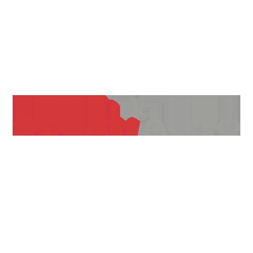 Logo Stern MadSpider