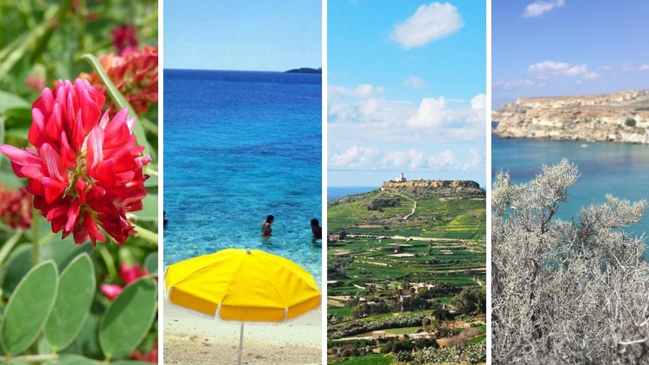 Malta v ročních obdobích.Kdyjenejlepšíčasletět?