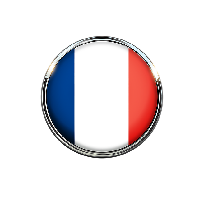 Francouzština online