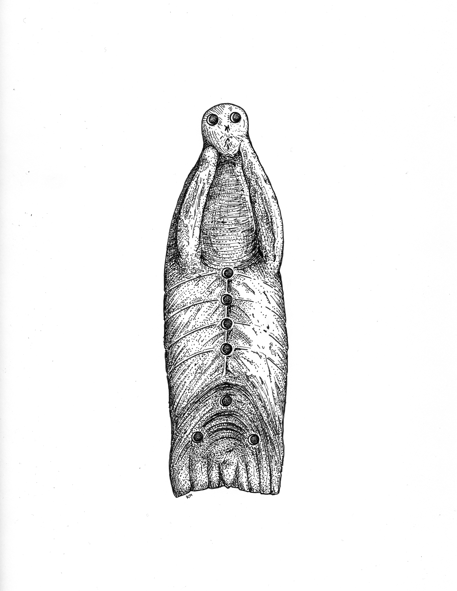 Otter carving drawing
