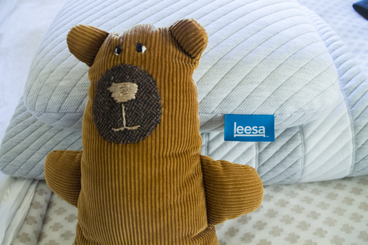 Teddy sleeping on Leesa mattress