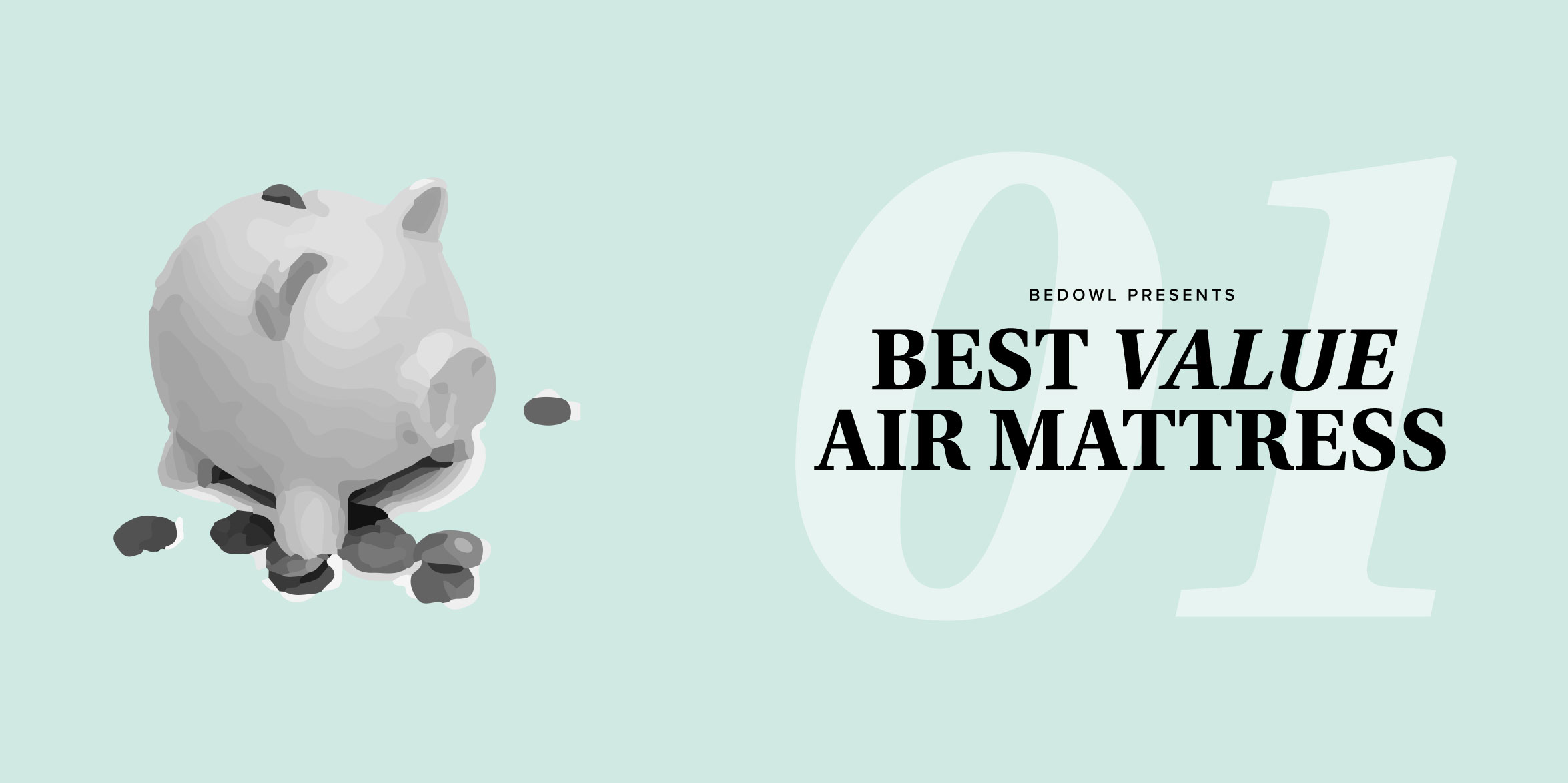 The Cheapest Air Mattresses (Under $50) by Bedowl