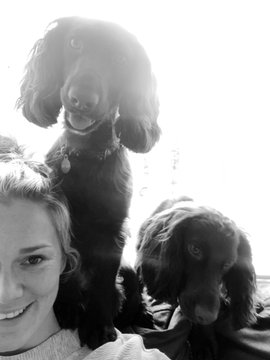 Rachael Burford and her two cute springer spaniels