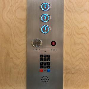 Victorian Home Elevator