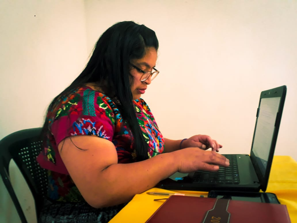 Indigenous woman using computer