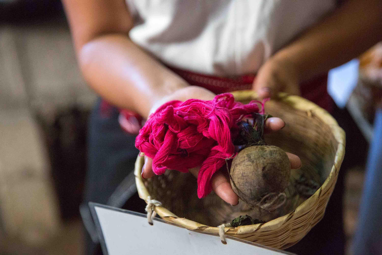 Natural cotton dye beetroot