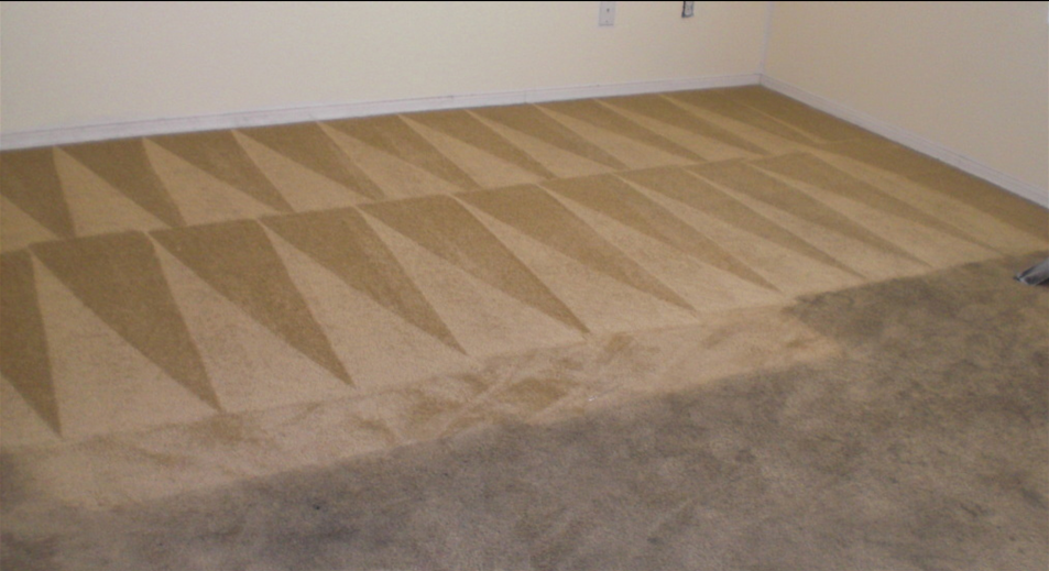 clean carpet in a fairbanks home