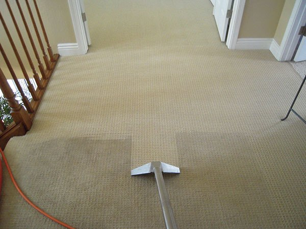 carpet cleaning by ringstad