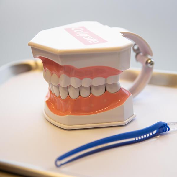 calgary denture