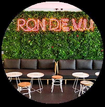 Ron De Vu