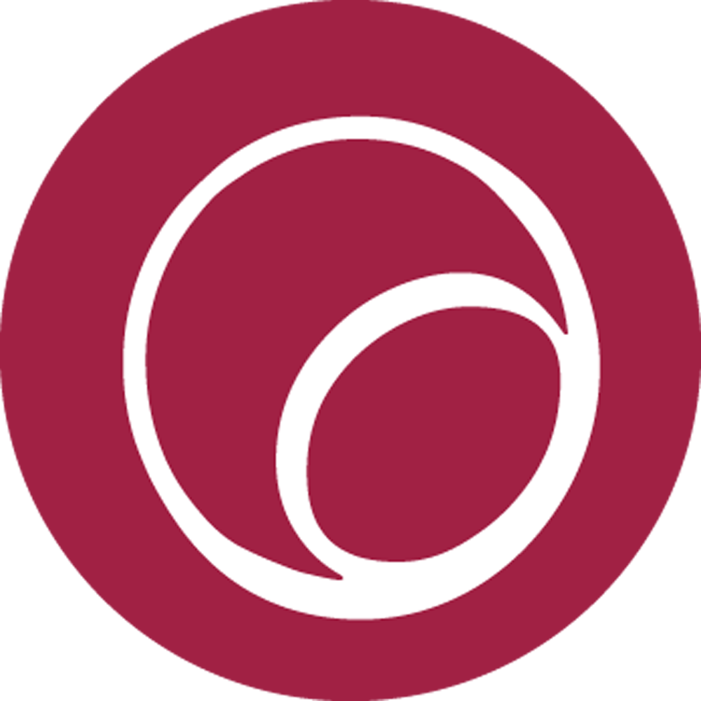 EnliteAI Logo