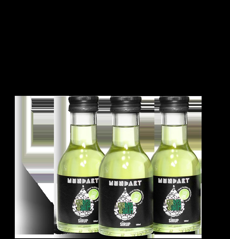 Gurke-Basilikum-Sirup (3x 100 ml)