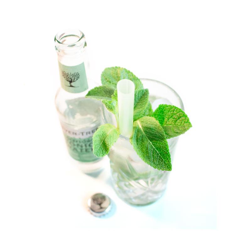 Rezept für selbstgemachtes Tonicgetränk mit MUNDART Sirup