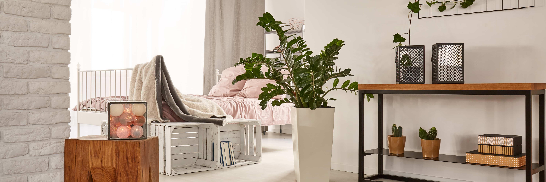 appartement neuf à Argenteuil 3