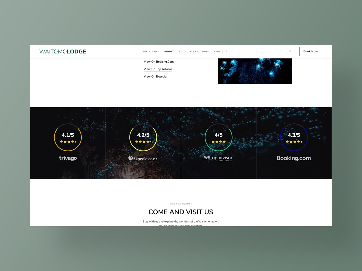 Website Design by Neon Hive