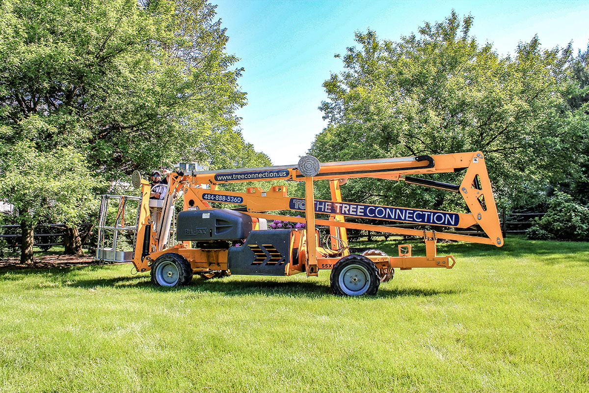 mobile lift for tree removals