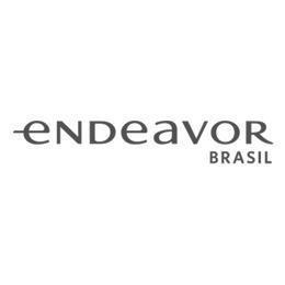 logo endeavor brasil